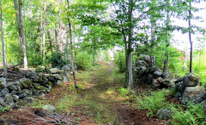 1. Trail Start