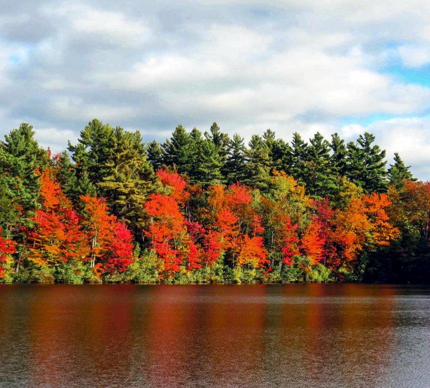 2-fall-colors