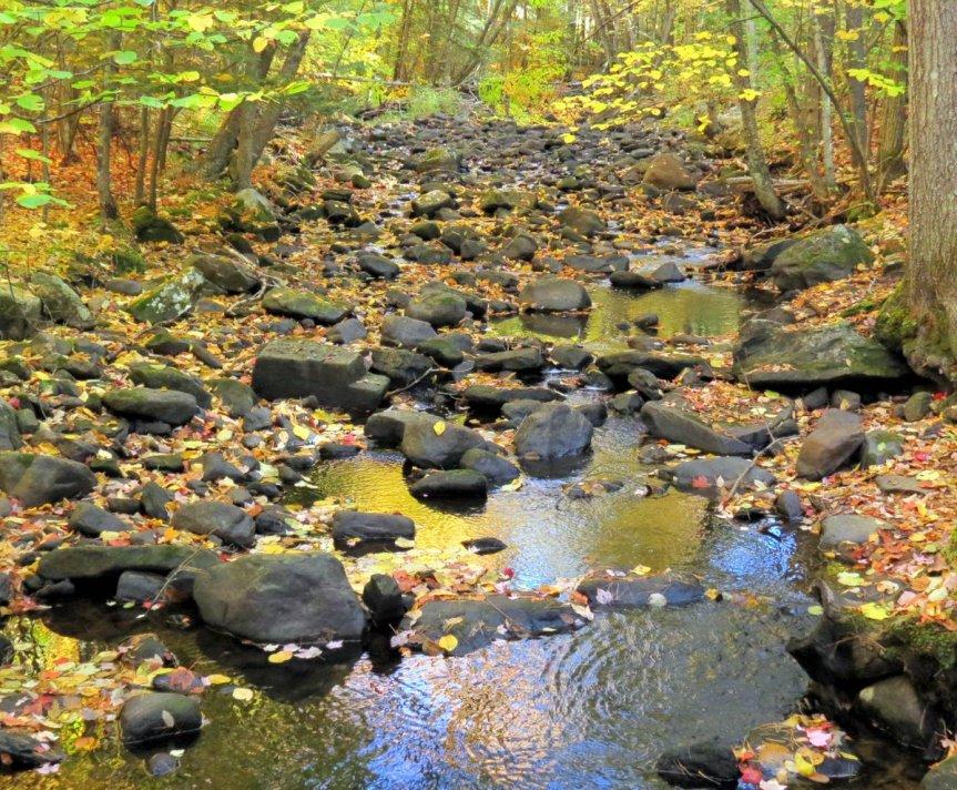 3-beaver-brook