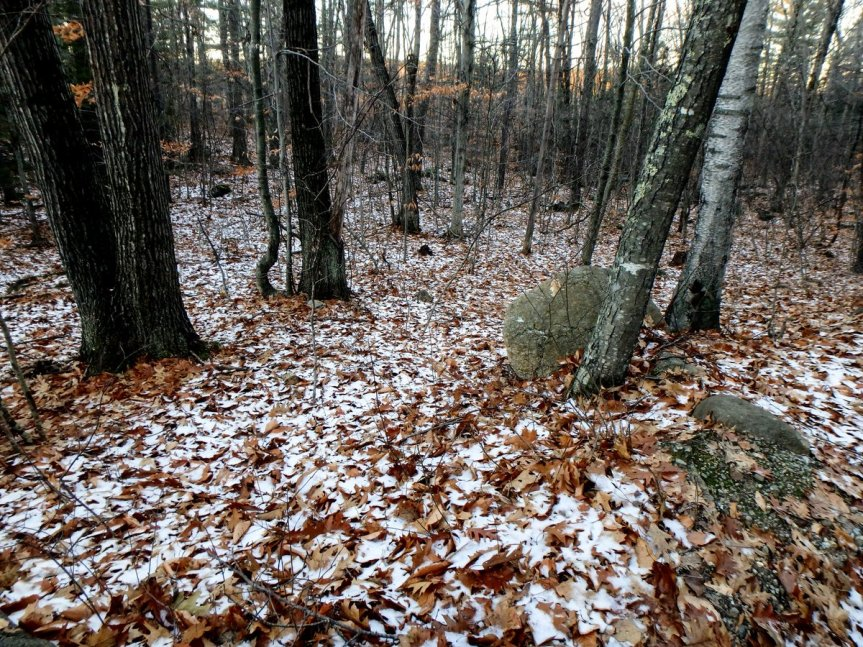 1-first-snow
