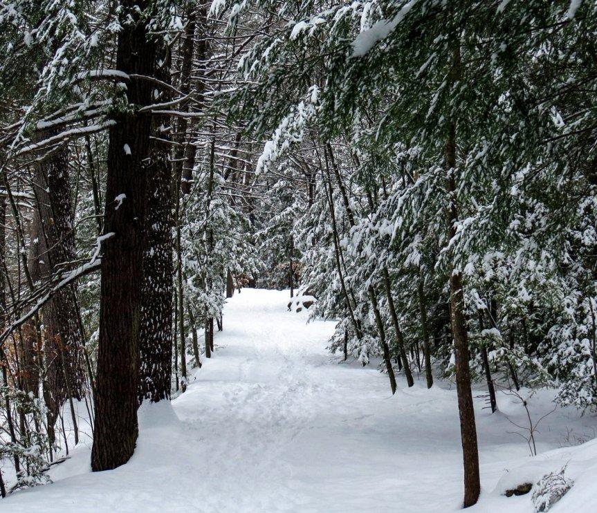 1-trail