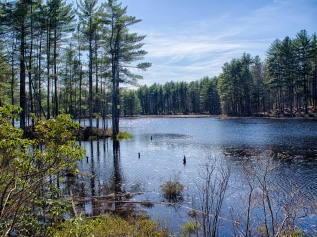 Beaver Brook Pond Hike