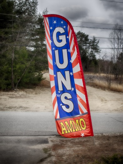 The Hunter's Gun Shop
