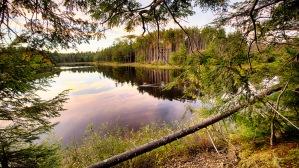 Smithville Reservoir at Sunset